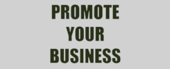Promote Your Business Online